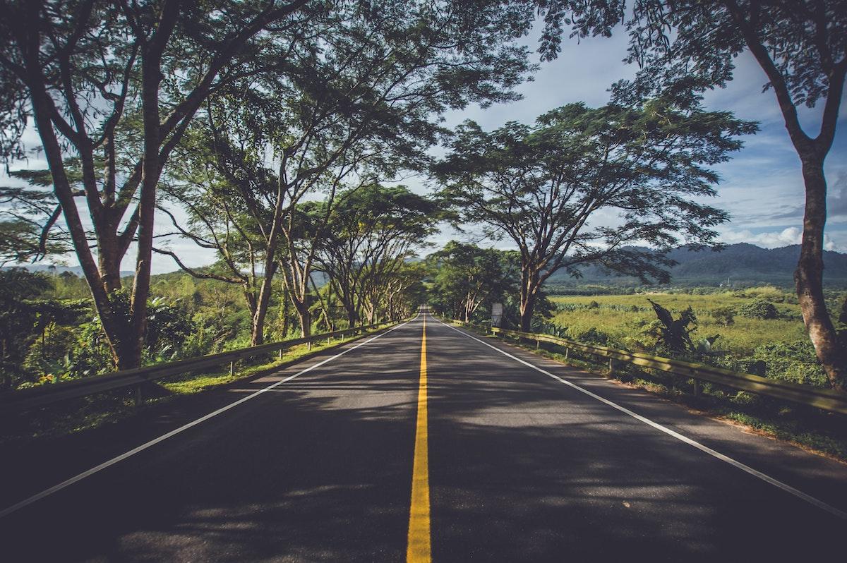 Lang køretur forude? Her er underholdningen bagsædet